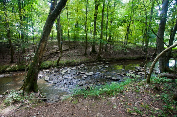 Favorite Middle Tennessee Day Hikes, Part1